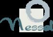 Nessel Inc Logo